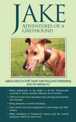 Jake Adventures of a Greyhound
