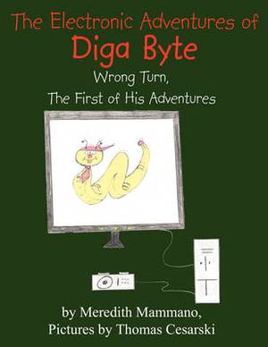 The Electronic Adventures of Diga Byte: Wrong Turn, The First of His Adventures