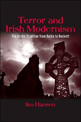 Terror and Irish Modernism