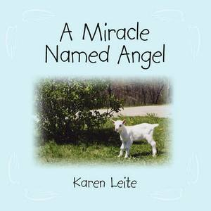 A Miracle Named Angel