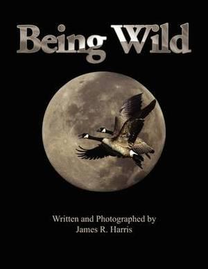 Being Wild