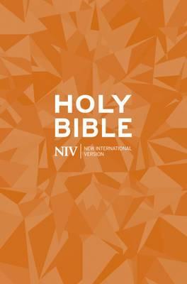 NIV Popular Paperback Bible: New International Version