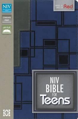 NIV Bible for Teens Charcoal/Blue Duo Tone
