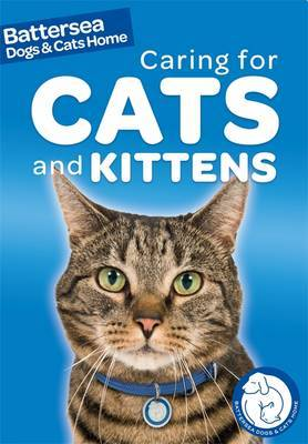Battersea Dogs & Cats Home: Pet Care Guides: Caring for Cats and Kittens