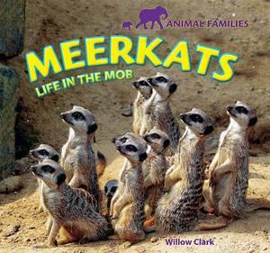 Meerkats: Life in the Mob