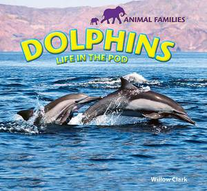 Dolphins: Life in the Pod