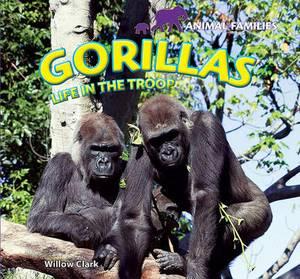 Gorillas: Life in the Troop