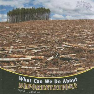 What Can We Do about Deforestation?