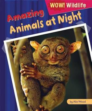 Amazing Animals at Night