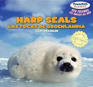 Harp Seals / Las Focas de Groenlandia
