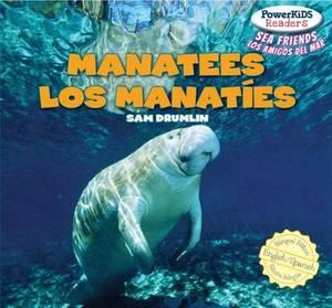 Manatees / Los Manaties