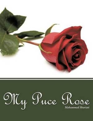 My Puce Rose