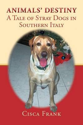 Animals' Destiny: A Tale of Stray Dogs in Southern Italy