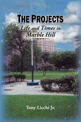 The Projects: Life and Times in Marble Hill