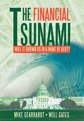 The Financial Tsunami: Will it Drown US in a Wave of Debt?