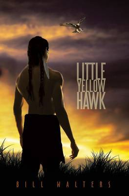 Little Yellow Hawk