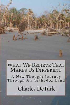 What We Believe That Makes Us Different: A New Thought Journey Through an Orthodox Land