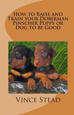 How to Raise and Train Your Doberman Pinscher Puppy or Dog to Be Good
