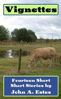 Vignettes: Fourteen Short Short Stories