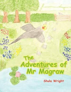 The Adventures of Mr Magraw