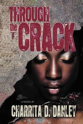 Through the Crack: A Novel