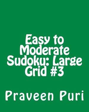 Easy to Moderate Sudoku: Large Grid #3: Fun and Logical Sudoku