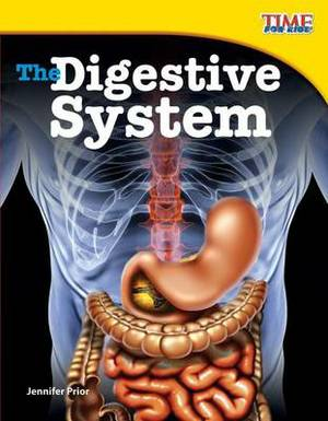 The Digestive System (Library Bound) (Fluent Plus)