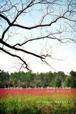 Living in the Meantime: Three Novellas