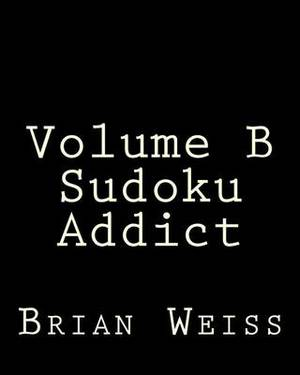 Volume B Sudoku Addict: Fun, Large Grid Sudoku Puzzles