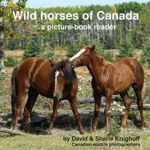 Wild Horses of Canada (a Picture-Book Reader)