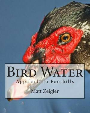 Bird Water: Appalachian Foothills