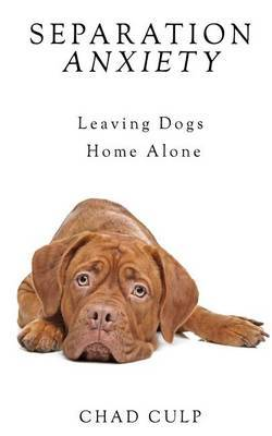 the anxiety of leaving home Fear of leaving the house: causes and treatments  you may take severe measures just to avoid leaving home,  as anxiety and related disorders tend.