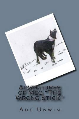 Adventures of Meg the Wrong Stick: A Clever Border Collie Dogs Diary