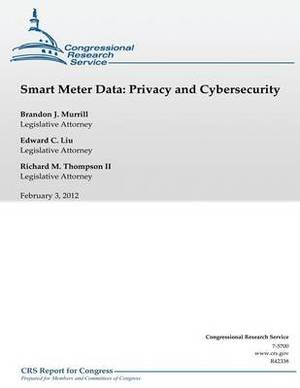 Smart Meter Data: Privacy and Cybersecurity