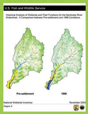 Historical Analysis of Wetlands and Their Functions for the Nanticoke River Watershed: A Comparison Between Pre-Settlement and 1998 Conditions