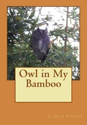 Owl in My Bamboo