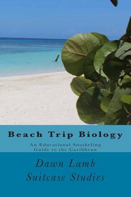 Beach Trip Biology: An Educational Snorkeling Guide to the Caribbean