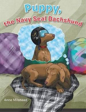 Puppy, the Navy Seal Dachshund