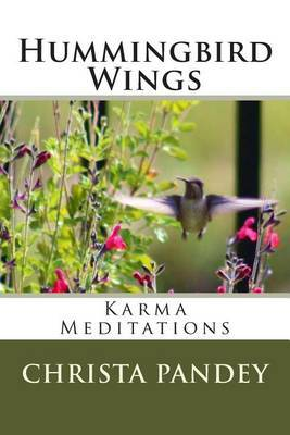 Hummingbird Wings: Karma Meditations