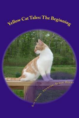 Yellow Cat Tales: The Beginning