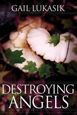Destroying Angels: A Leigh Girard Mystery