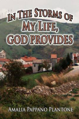 In the Storms of My Life, God Provides