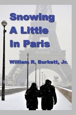 Snowing a Little in Paris