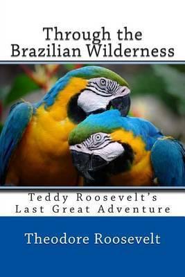 Through the Brazilian Wilderness