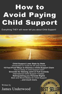 How to Avoid Paying Child Support: Learn How to Get Out of Paying Child Support Legally in the USA! a Must Read for Anyone Struggling with Child Support Payments.