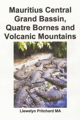 Mauritius Central Grand Bassin, Quatre Bornes and Volcanic Mountains: A Souvenir Collection of Colour Photographs with Captions