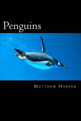 Penguins: A Fascinating Book Containing Penguin Facts, Trivia, Images & Memory Recall Quiz: Suitable for Adults & Children