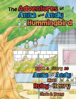 The Adventures of Anna and Andy Hummingbird: Anna and Andy Meet Ruby and Henry