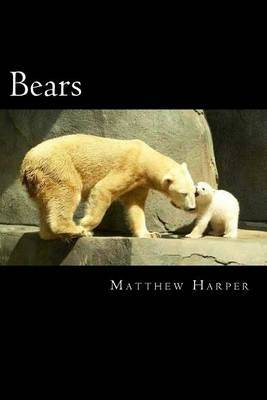 Bears: A Fascinating Book Containing Bear Facts, Trivia, Images & Memory Recall Quiz: Suitable for Adults & Children
