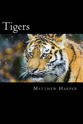 Tigers: A Fascinating Book Containing Tiger Facts, Trivia, Images & Memory Recall Quiz: Suitable for Adults & Children